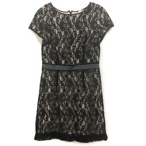 Lauren Conrad black lace short sleeve dress -355